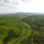 Karpatské bukové pralesy sú jediným miestom Slovenska, kde voľne žijú zubry. UNESCO potvrdilo ich unikátnosť